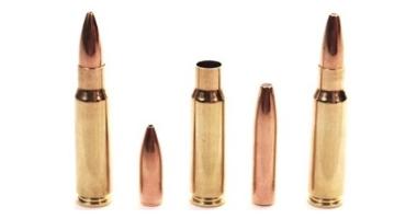 bsp-bullet-comparison-group.png